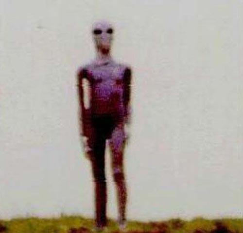 Инопланетяне не гуманоиды